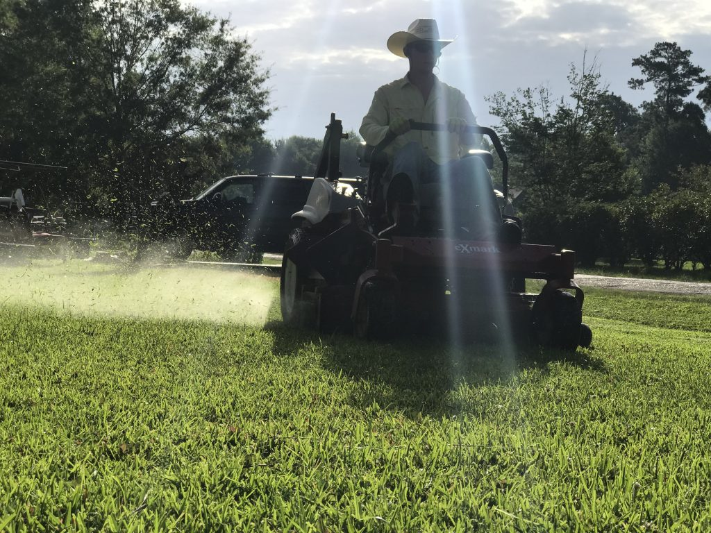 Port Arthur, Tx Lawn Care