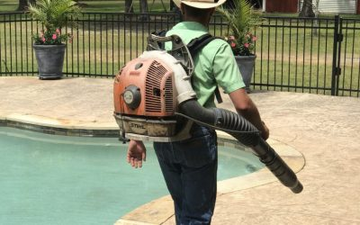 How To Pick A Lawn Care Service In Southeast Texas