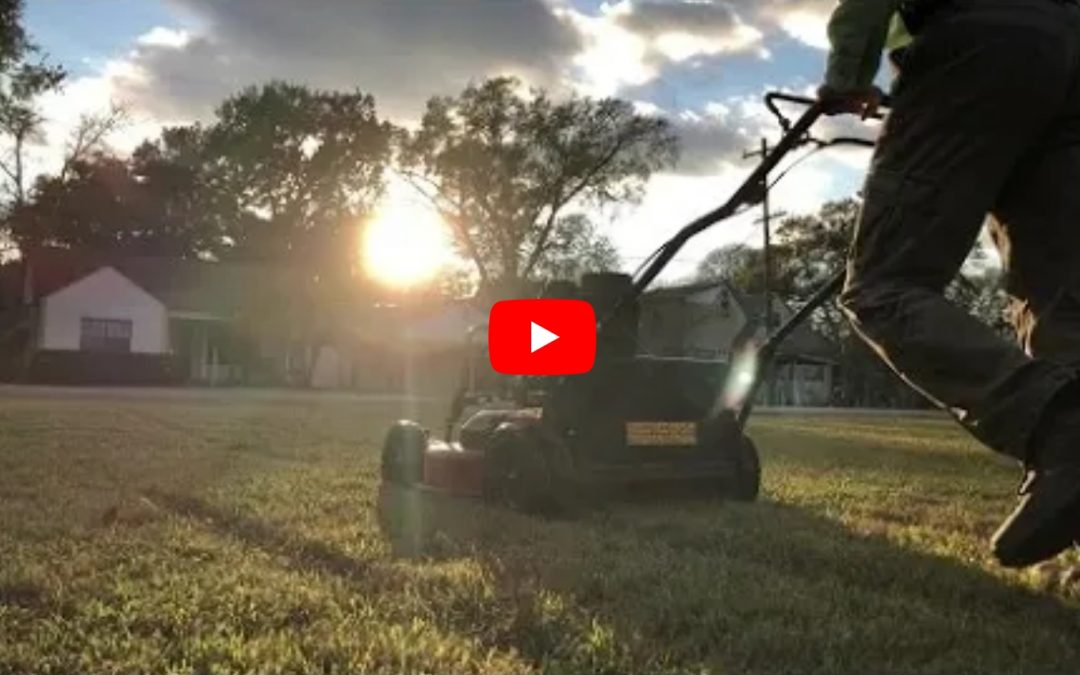 409 Mowers Customers Rate Their Lawn Service – www.409mowers.com